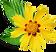 Naturopathie, Détox, Bienfaits des plantes.