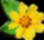 Kleine gelbe Blume