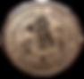 Torchlight Academy logo.png