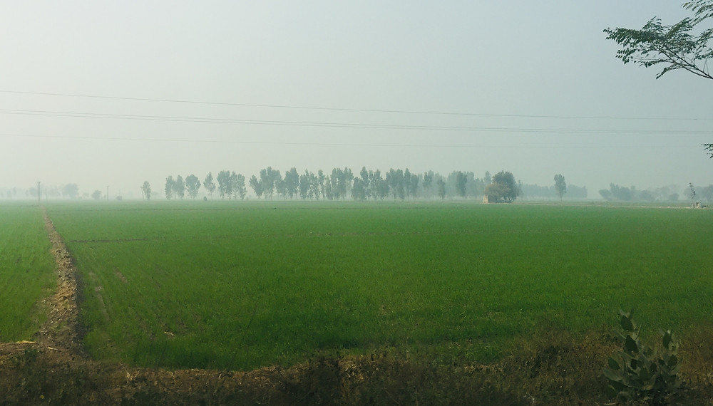 About 10 kilometers from the Ferozepur city