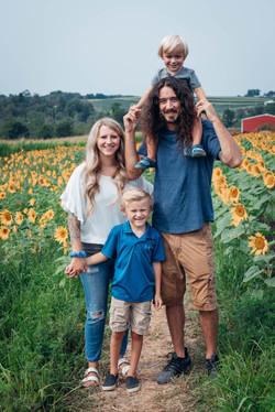 sunflower field minis