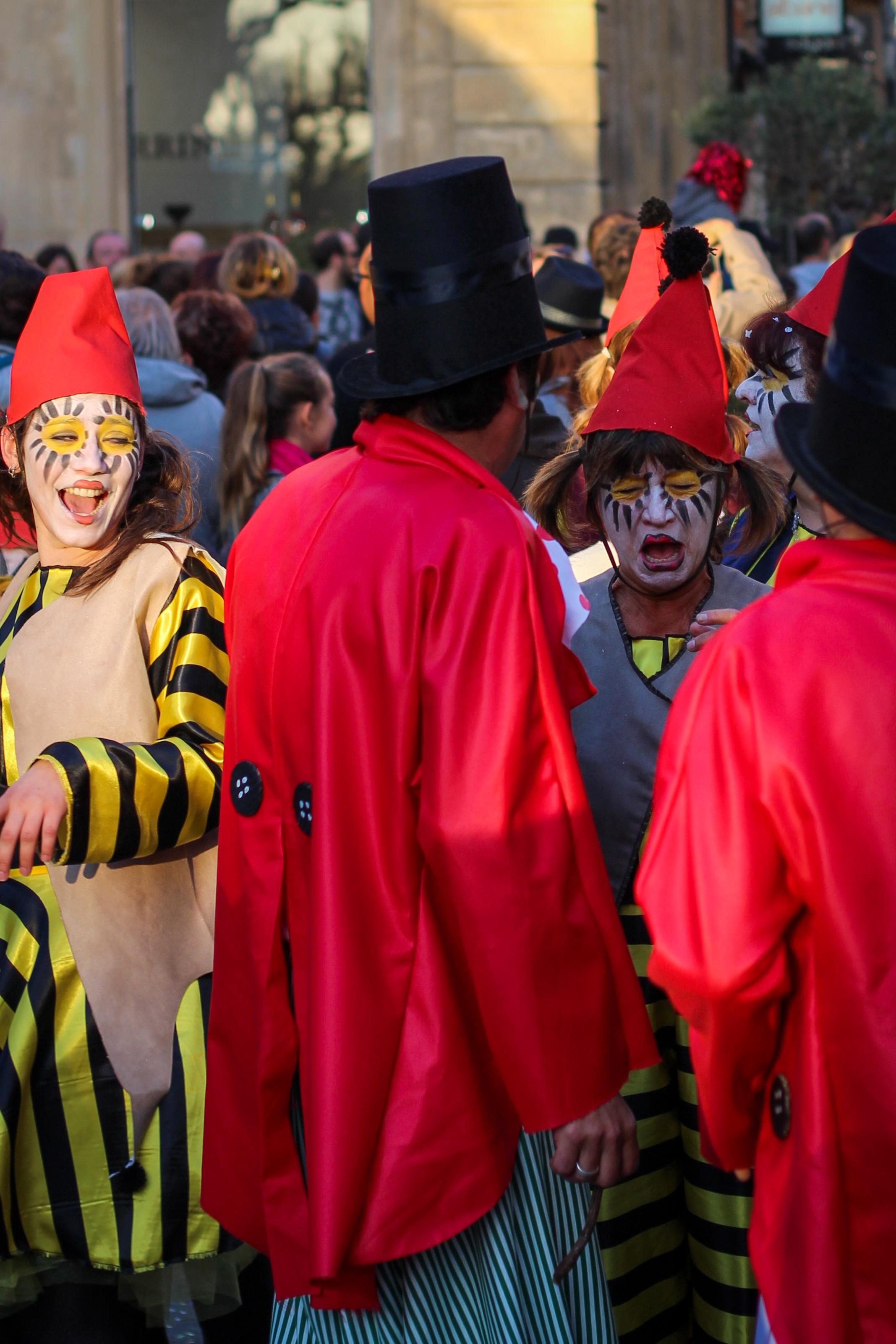 Carnaval_Aix_2015-11