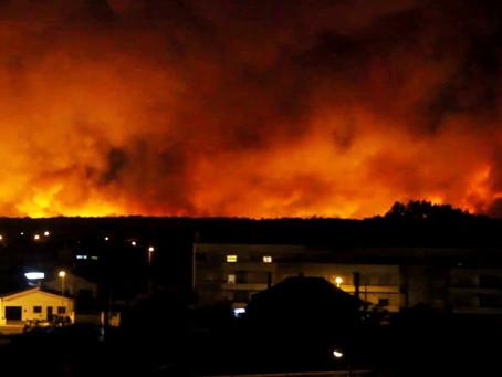 Algumas considerações sobre os incêndios florestais