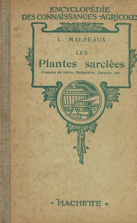 Les Plantes Sarclees de Achat Malpeaux
