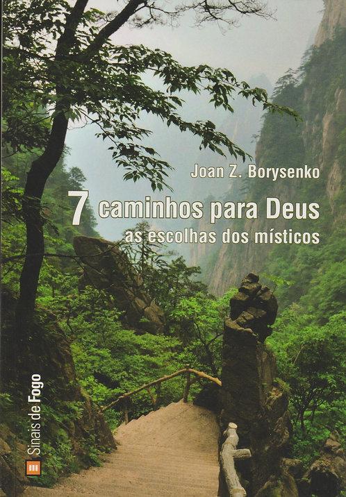 7 Caminhos Para Deus de Joan Z. Borysenko