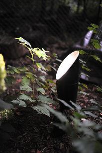 Landscape Light in garden