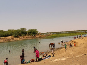 Cross-continental YouthMapping for fighting schistosomiasis in the Senegal River Valley