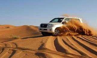driver desert.jpg