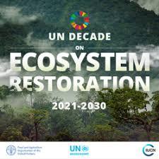 UN International decade for ecosystem renewal