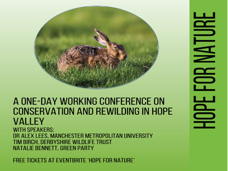 Actions from Hope for Nature conference