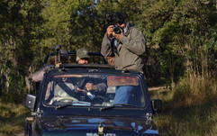 Central Indian Highlands Wildlife Film F