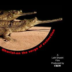 gharial film 1