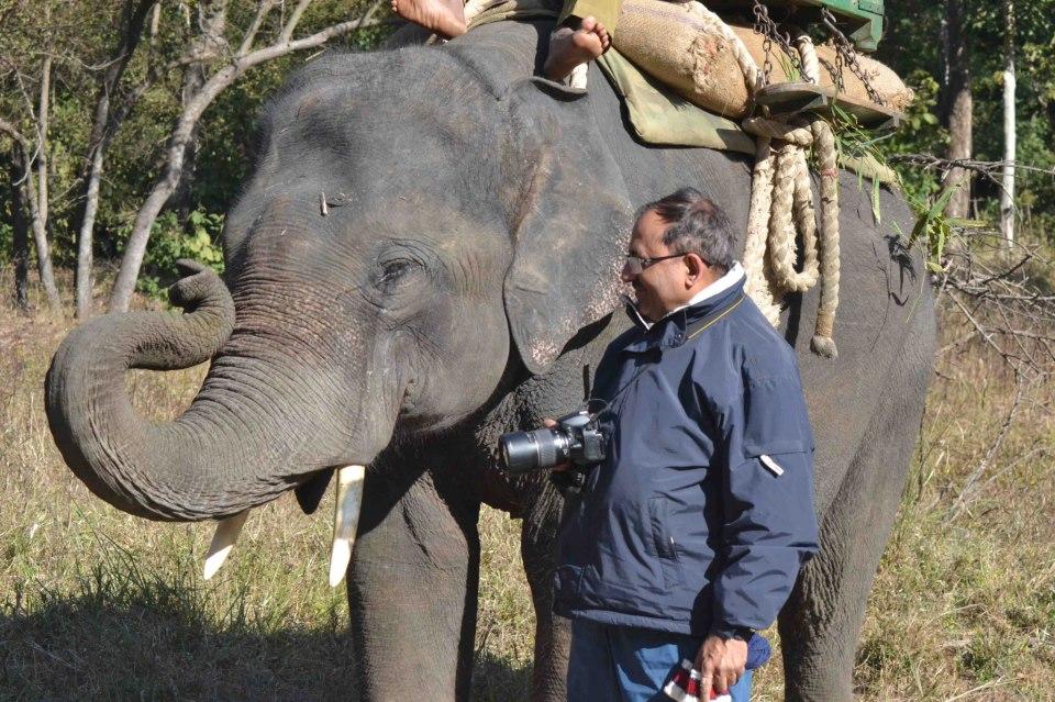 Inside Kanha Tiger Reserve - Central Ind