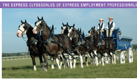 Express Employment Professionals Hosts the Express Clydesdales