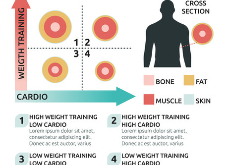 WEIGHT-LOSS TRANSFORMATIONS – CARDIO vs WEIGHT TRAINING