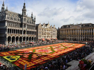 Flowercarpet in Brussels