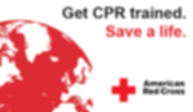 Red Cross - Safety Training Group - Prof