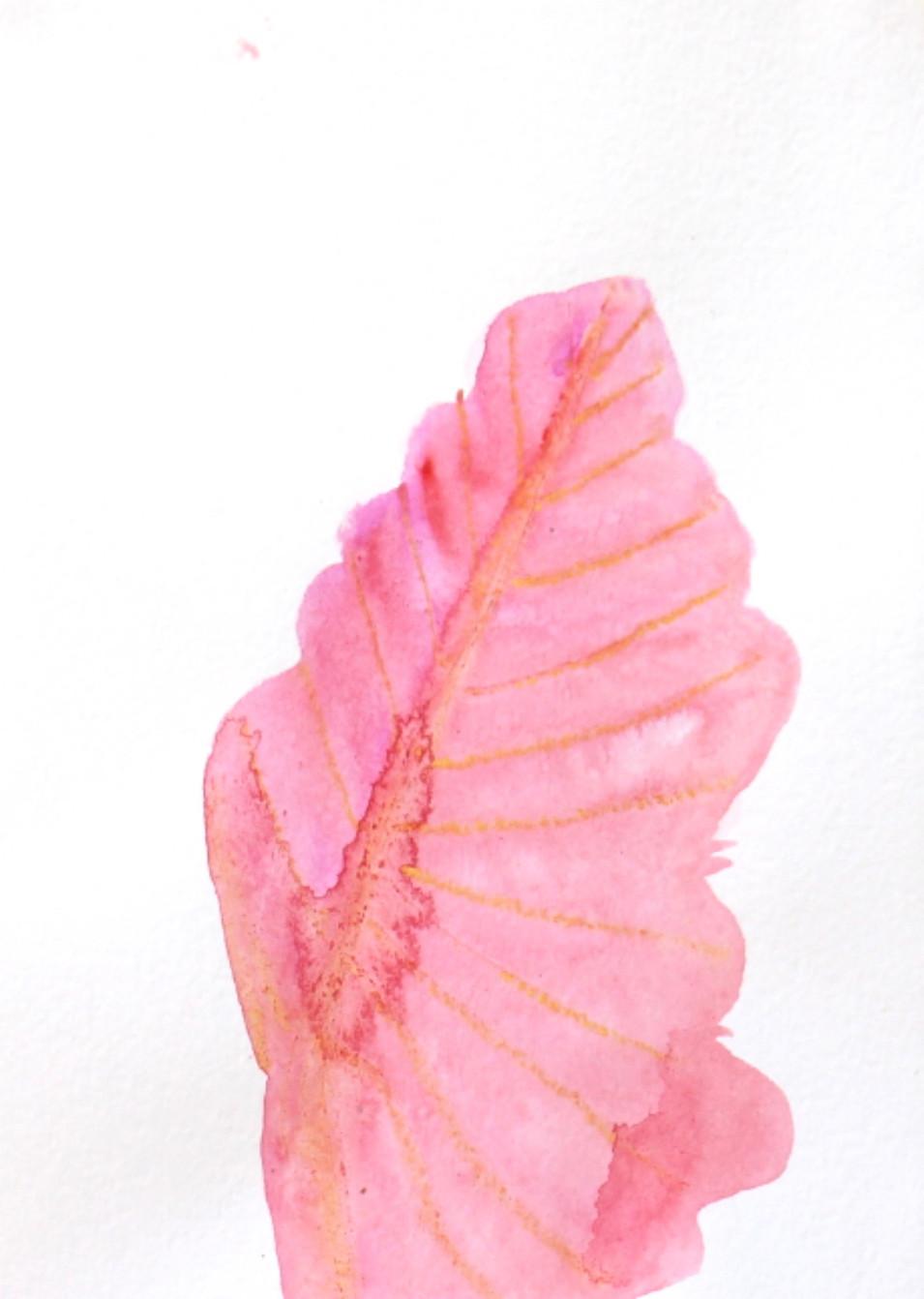 Bleeser Leaf
