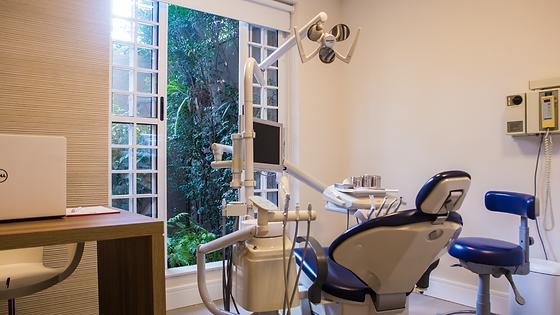 Sala do consultório dentário da Clínica Eufrazio com uma bela vista para o jardim