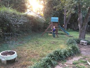 Ellen's End of Week 1 Victory Garden Update