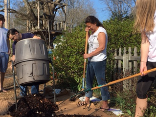 Learning Non-Cognitive Skills While Sheet Mulching