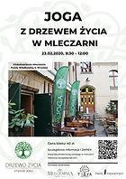 Joga-z-Drzewem-Życia-w-Mleczarni_-23.02.