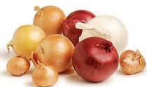 ING-onions_sql_edited.jpg