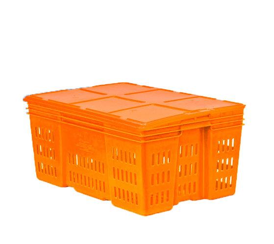 Caja de Plastico con Tapa Montreal Calada