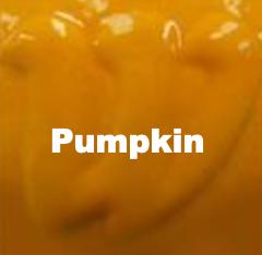 Pumpkin Orange Underglaze
