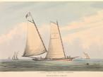 Ann of Norfolk