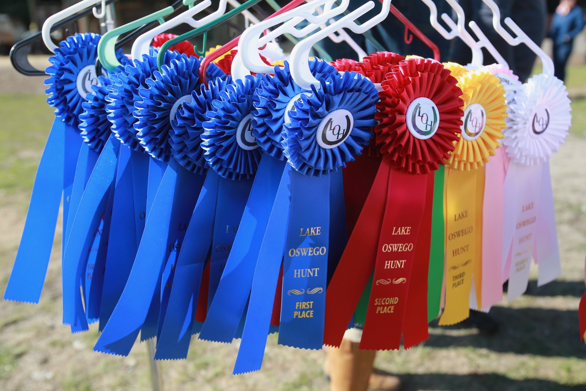 SHOW RIBBONS!