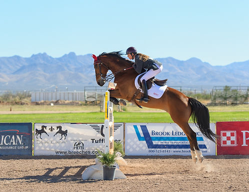 Jump Into Spring! Hunter/Jumper Show