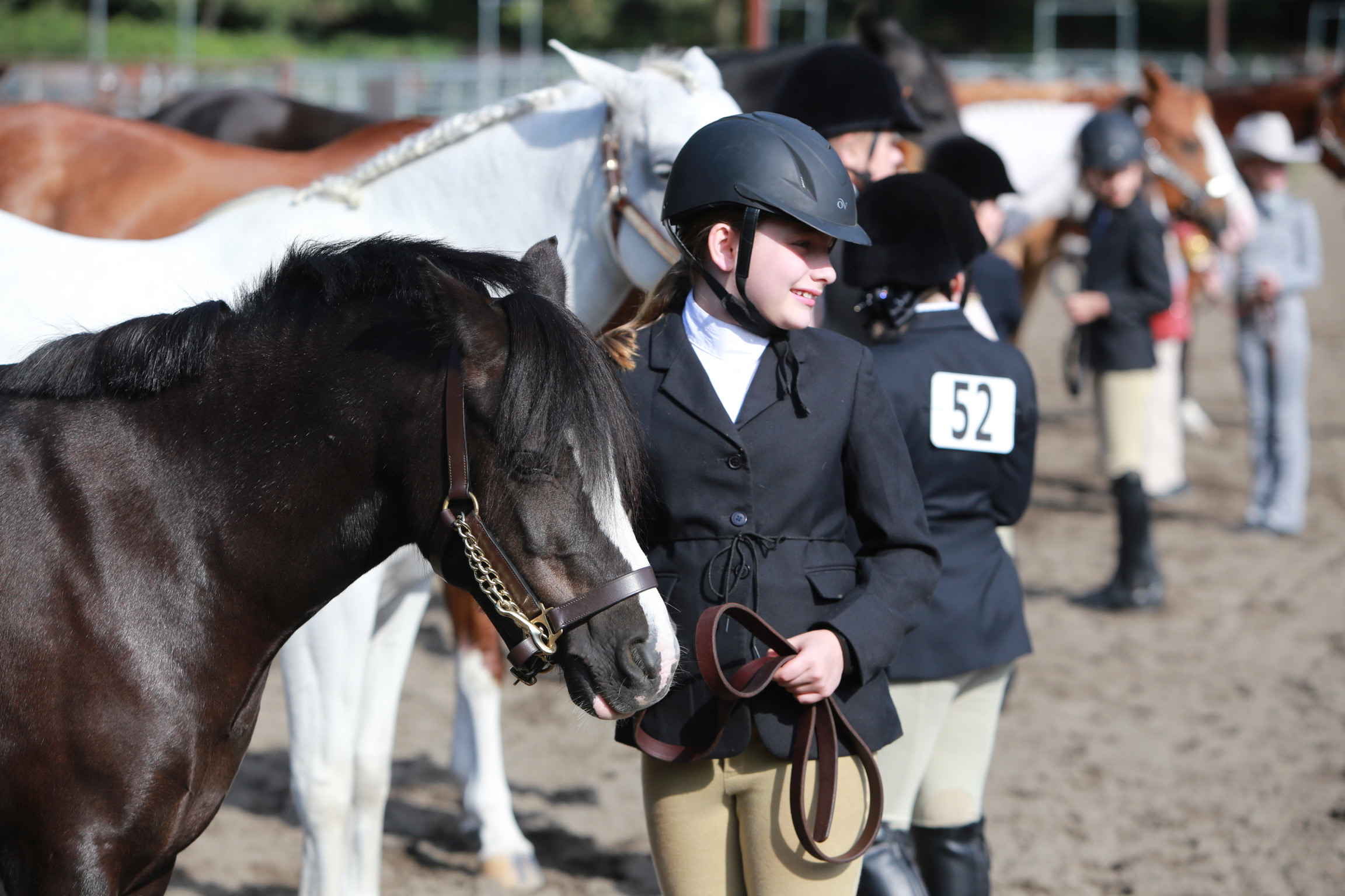SCHOOLING SHOWS