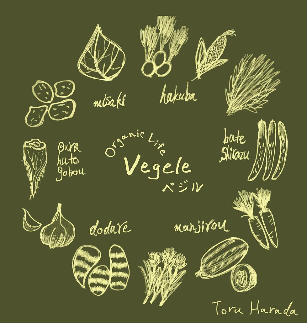 原田融の手書き野菜イラスト