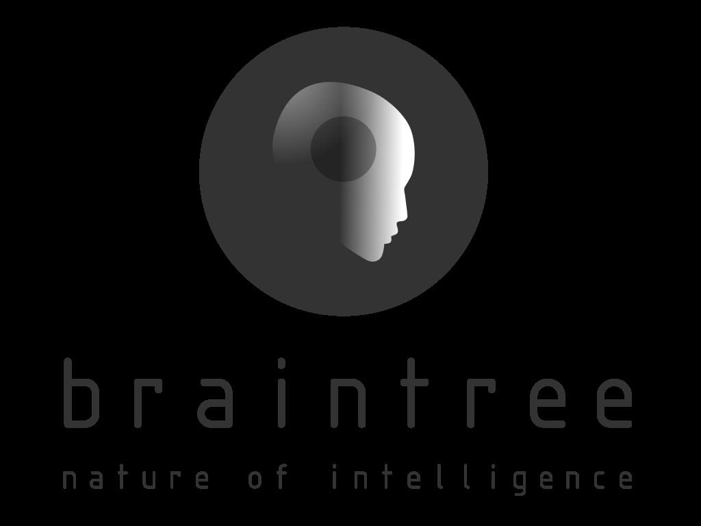 BT New logo