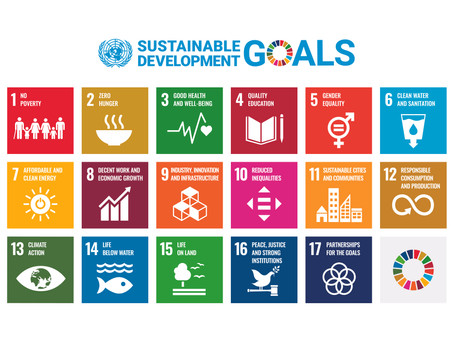 What do the Sustainable Development Goals (SDGs) have to do with Eat United?