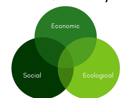 What does Sustainability even mean?