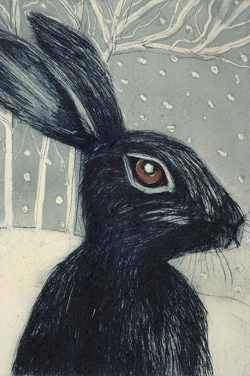 Nikki Braunton - Winter Hare