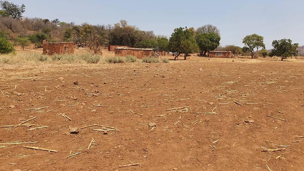 Kadoma Plot (15 ha)