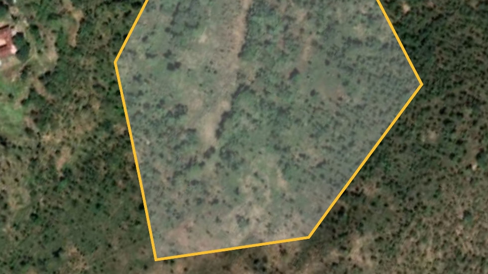 Mazowe plot 120ha