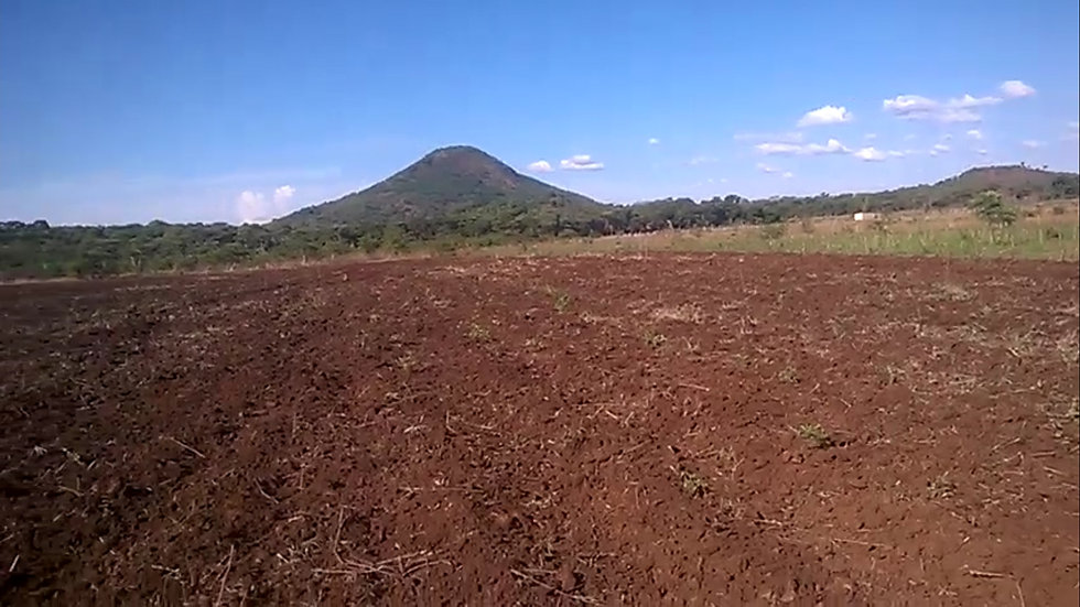 Shamva plot (Horticulture) 10hactare Left,