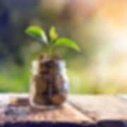 bigstock-Plant-Growing-In-Savings-Coins-