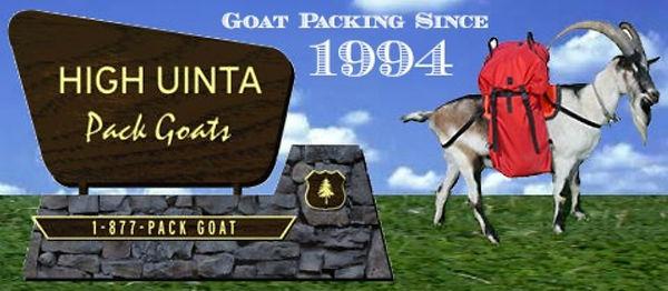 high uinta pack goats_web.jpg