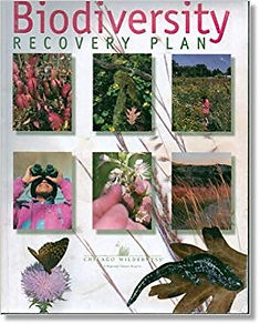 CW Biodiversity Recovery Plan cover phot