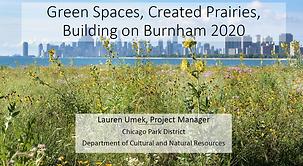 Green Spaces Umek slide photo.PNG