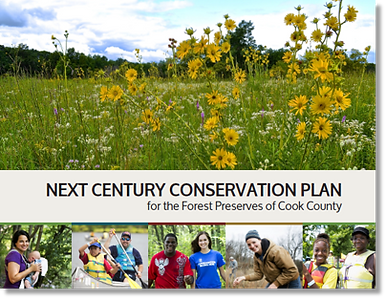 Next Century Cons Plan cover photo.png