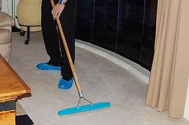 carpet-grooming