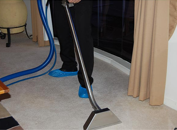 carpet-steam-cleaning-process