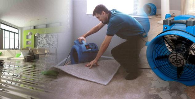 water-damage-restoration-technician