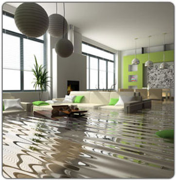 water-damage-carpets-canberra